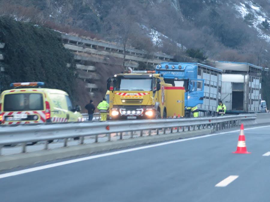 MAURIENNE Un camion de bestiaux se couche sur l'A43