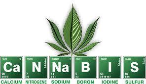 Trois tonnes de cannabis saisies dans un camion transportant… des salades